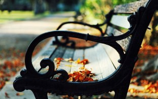 866565-park-bench-wallpapers